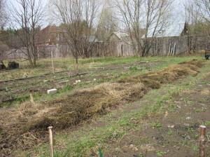 огород весной